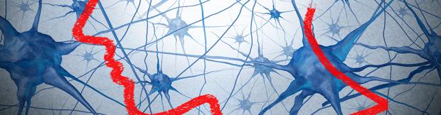 Máster en neuroeducación