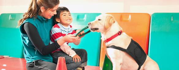 Máster en terapias asistidas con animales