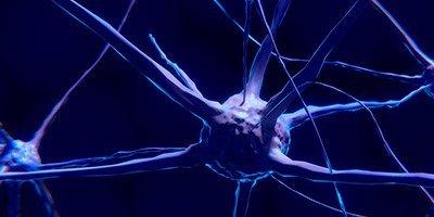 Biofeedback y Neurofeedback: aplicaciones en el ámbito psicológico