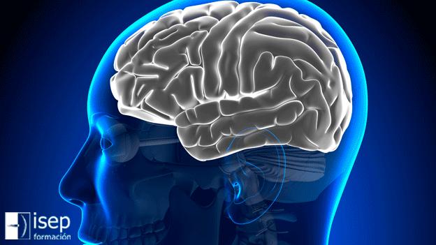 Lesiones en el Hemisferio cerebral izquierdo