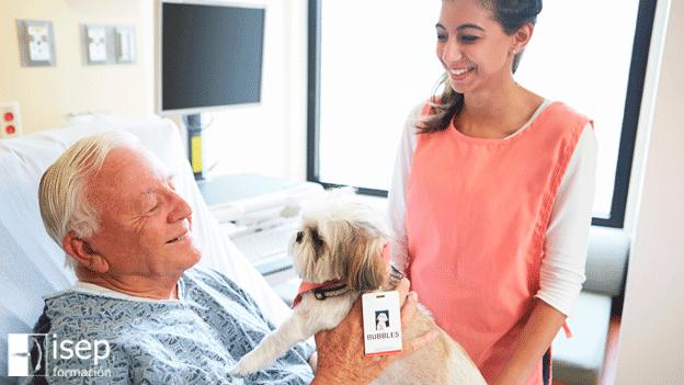 Aportaciones de las intervenciones asistidas con animales en la atención biopsicosocial