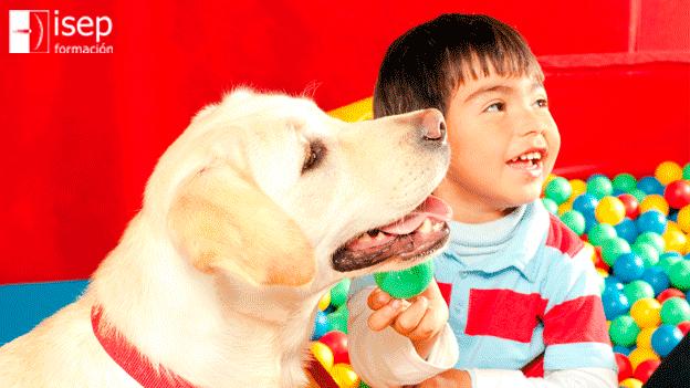 Los perros en la terapia asistida con animales