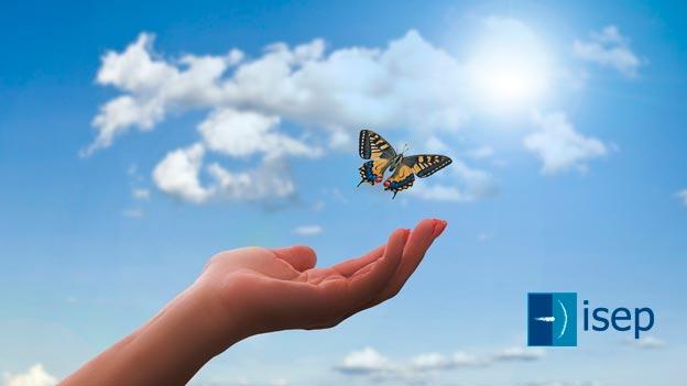 La Mariposa Isabella, la herramienta terapéutica para tratar traumas