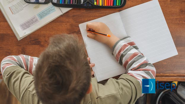 ¿Los alumnos con síndrome de Down aprenden diferente?