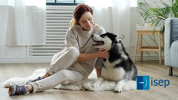 Introducción a la Intervención Asistida con Animales (IAA)